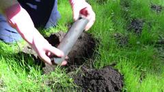 Gardener man set plastic pipe shape mole trap under ground Stock Footage