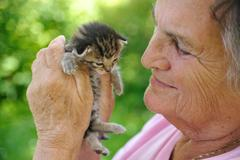 Senior woman holding kitten - stock photo