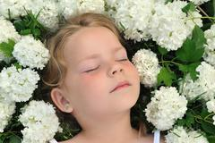 Little girl laying in flowers - snowball Stock Photos