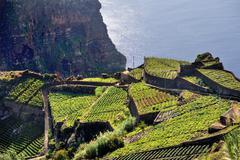 South coast of Madeira island, Rancho - Portugal Stock Photos