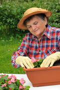 Senior woman - gardening - stock photo