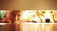 Laughing little boy with his best friend beagle dog under the bed - stock footage