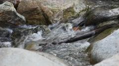 Creek Running Water Over Rocks Stock Footage