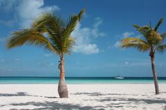 Carribean beach - stock photo