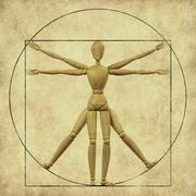 vitruvian mannequin - stock illustration