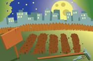 Stock Illustration of vegetable garden by night