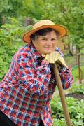 Senior woman gardening - stock photo
