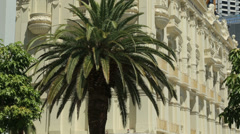 His majesty's theatre, and palm tree, hay street, perth, australia Stock Footage