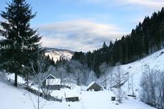Stock Photo of village in the carpathian mountains