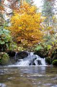 Stock Photo of carpathian mountains in autumn
