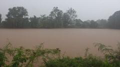 Monsoon rain Stock Footage