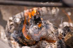 Wood fire burning in a barbecue - stock photo
