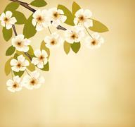 vintage background with blossoming tree brunch and white flowers. vector. - stock illustration