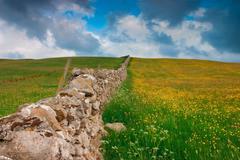Dry stones wall Stock Photos