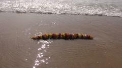 Hindu ritual flowers garland and Bengal bay  waves on beach Stock Footage