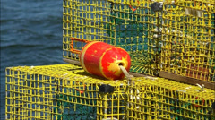 Lobster trap buoy Stock Footage