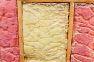 Stock Photo of carpenter ant nest pest glasswool isolation damage
