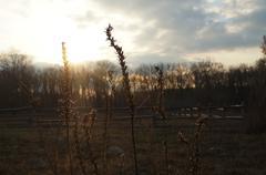 March, landscape - stock photo