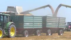 Combine harvesters unloading wheat Stock Footage