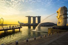 Singapore landmark merlion with sunrise Stock Photos