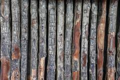 log texture wall background - stock photo