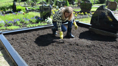 Woman girl with rubber gloves loosen ground on grave in cemetery Stock Footage