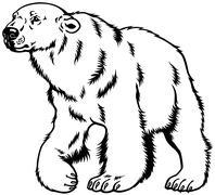 polar bear black white - stock illustration