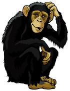 Chimpanzee Stock Illustration