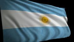 Flag Argentina Stock Footage