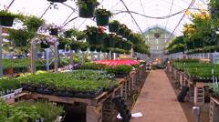 Pan Across Greenhouse Stock Footage