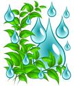 Stock Illustration of green leaves with drops of water