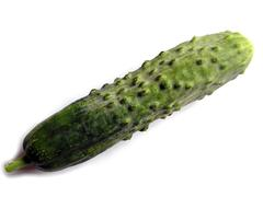 Stock Photo of Cucumber