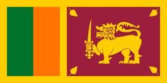 The national flag of Sri Lanka - stock illustration