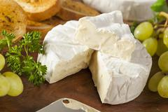 Organic homemade white brie cheese Stock Photos