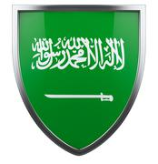 Saudi flag Stock Illustration