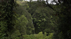 View of a hidden falls in a tropical rainforest - stock footage