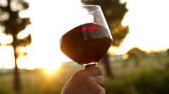 Red wine being swirled in wineglass in slow motion - stock footage