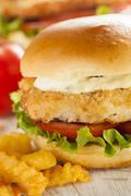 Breaded fish sandwich with tartar sauce Stock Photos