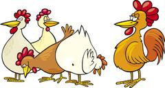 Rooster and hens - stock illustration
