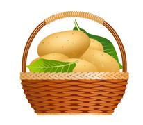 Raw potatoes in a basket Stock Illustration