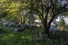 Ruins of the Biblical City of Kadesh Stock Photos