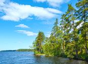 Stock Photo of lake ruotsalainen summer view (finland).
