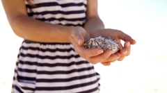 Close up of women's hand holding sea shells at the beach Stock Footage