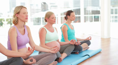 Pregnant women doing yoga in fitness studio Stock Footage