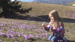 Child Playing, Smelling, Picking Flowers, Meadow, Smiling Little Girl, Children - stock footage