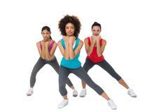 Full length portrait of women doing power fitness exercise - stock photo