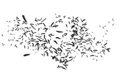 Many feathers blowing in the breeze - stock illustration