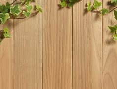 an ivy plant on a table of hardwood - stock photo