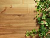 Stock Photo of an ivy plant on a table of hardwood