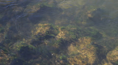 Full screen water surface ripples reflection background loopable Isar Munich - stock footage